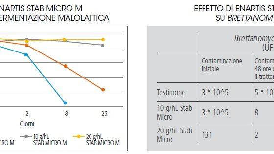 Stab Micro – Stab Micro M -2-
